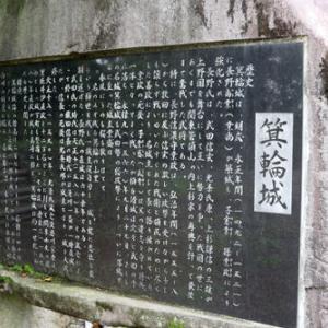 箕輪城(群馬県)⑤歴史