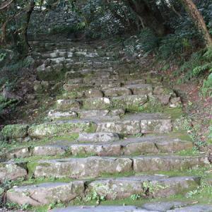 宇和島城(愛媛県)②木漏れ日