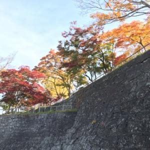 令和元年の盛岡城跡公園の紅葉