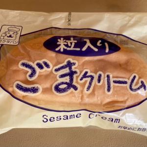 ごまクリームパンと寄せ植え