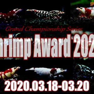 シュリンプアワード 2020♪