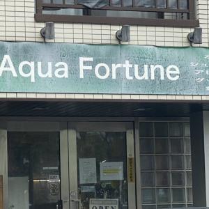 AQUA FORTUNE♪