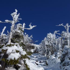 1月の蓼科山「スズラン峠から冬の蓼科山を散策♪」