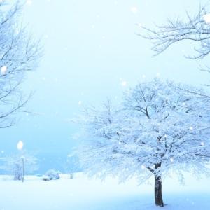 冷えと乾燥の季節~冬の養生法~