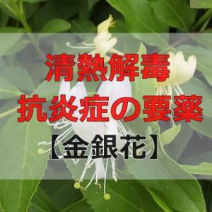 清熱解毒・抗炎症の要薬【金銀花(きんぎんか)】の効能効果