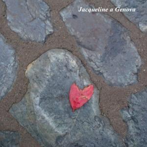 美しくも切ない雨に濡れた赤い落ち葉。