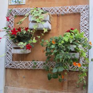 店頭を飾る花と観葉植物。