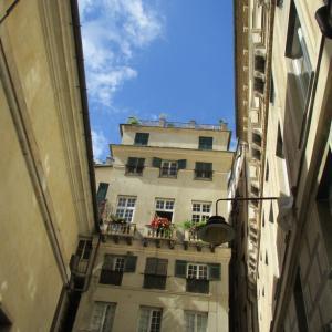 旧市街で青空を見上げる。