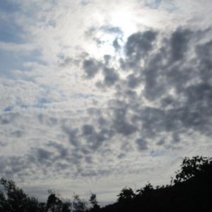 灰色のうろこ雲☆