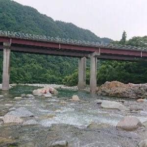 高原川 解禁