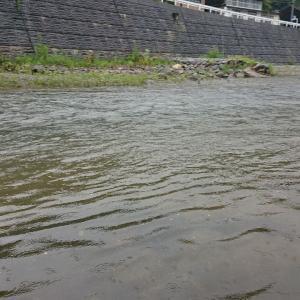 雨 上州かぶら川