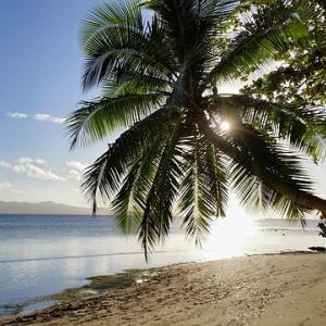 フィジー留学ってどうなの?人気のセブ島留学と徹底比較!