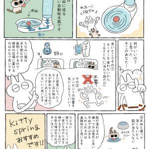 【PR】KittySpringのご紹介