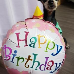 姫奈12歳のお誕生日
