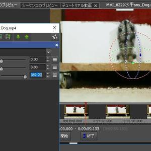 ビデオ編集ソフトNCH VideoPadを3か月プラン版から永久ライセンス版に買換えました
