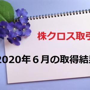【まったり株クロス取引日記】最終日の在庫にため息がでた2020年6月の取得結果