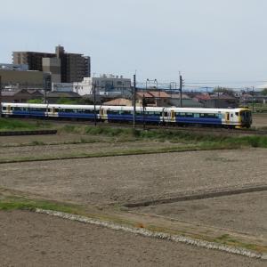 あしかが大藤まつり号(E257)と富士山