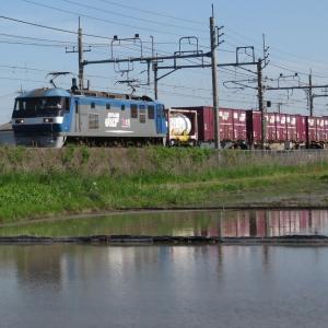 自粛中の撮り鉄・EF210-146