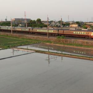 E655系団臨(2年前の5月3日)