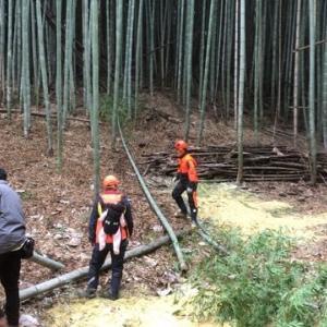 第一回竹やぶ会議・間伐終了。