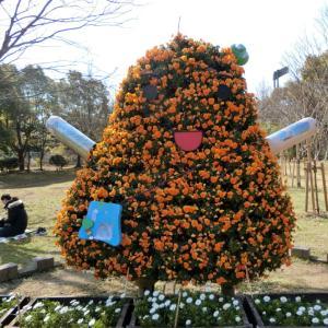 長居植物園・桃の花満開