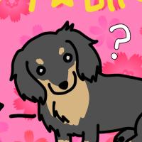 犬の誕生日:近年