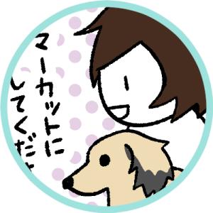 犬のサマーカット