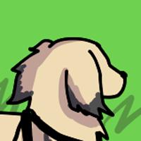 15歳シニア犬の現在の様子L