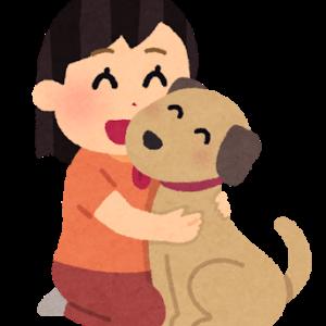 WiFi使って動物の命を救う。どうぶつWiFiで毎月100円寄付を。