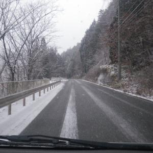 2月1日 雪降ってました