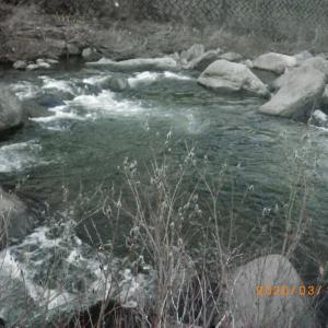 夕方 渓流釣行