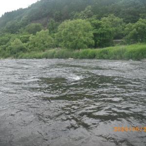 益田川上流 夕方釣行