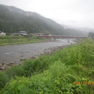 ウミネコも見に来た益田川上流