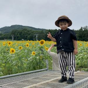 益田川上流釣行 8月11日