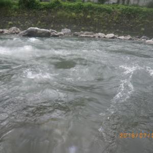 宮川下流~益田川上流 釣行