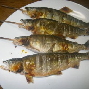 今夜の肴釣り 夕方益田川上流