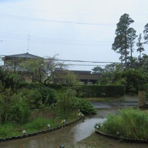 雨の一日~☔