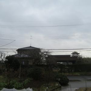 雨のち晴れ~🎶