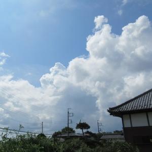 空の美しさ~🎶