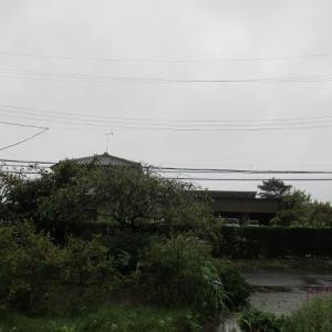 台風が通り過ぎました~🎶