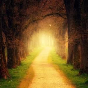 自分の願いに誠実に向き合えば、道は拓ける。