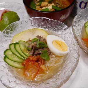 そうめんで韓国風冷麺作ってみた & 伸び猫