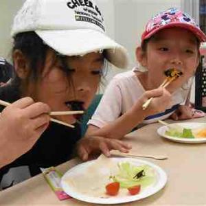"""【蝉】セミの素揚げ「ナッツみたいな香り。おいしい」 静岡・磐田で昆虫食イベント""""むしパ!セミを食べよう"""""""