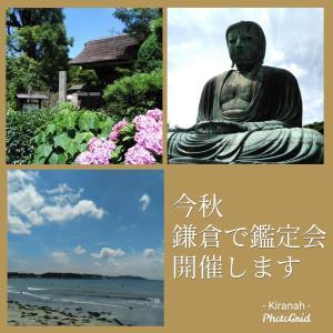 鎌倉で鑑定会を開催します