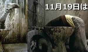 今日は世界トイレの日。 心に残るベスト便器 ×3