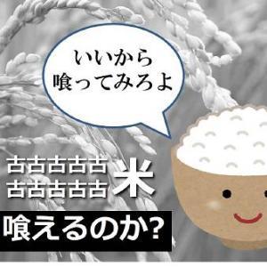 【動けポンコツ炊飯器】十年米は喰えるのか【古古古古古古古古古古米を炊いてみろ】