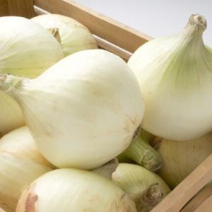 cookpadで人気検索1位!新玉ねぎを使ったレシピ。