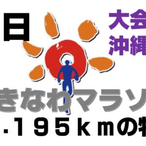 【おきなわマラソン⑦】フルマラソン翌日は沖縄観光もしっかり楽しむ!勝連城跡と海中道路~初めてのフルマラソンにチャレンジし完走した旅ランブログ~(大会翌日・最終日の章)
