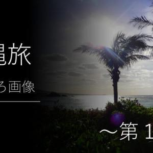 第1弾|沖縄旅おもしろ画像 ~笑える・びっくり・珍しい!を集めた沖縄の写真集~