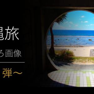 第2弾|沖縄旅おもしろ画像 ~笑える・びっくり・珍しい!を集めた沖縄の写真集~